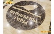 holl-v-zhk-vorobevy-gory-3