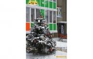 novogodnii-zhk-vorobevy-gory